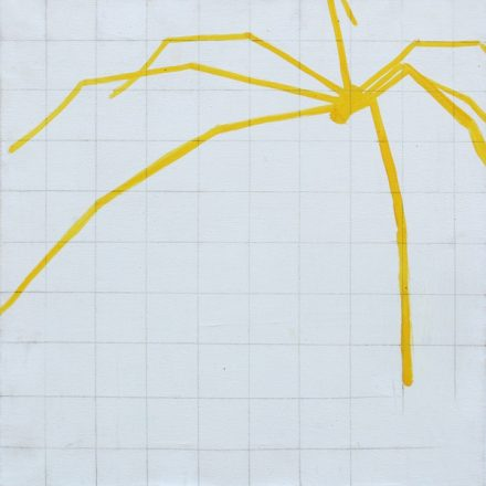 yellow spider and net